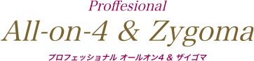プロフェッショナル オールオン4 & ザイゴマ